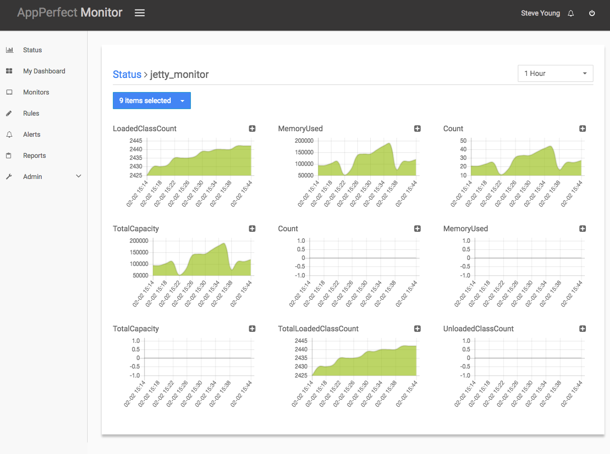 Jetty Server Monitoring, J2EE Monitoring - AppPerfect